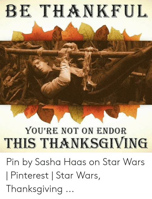 Be Thankful You Re Not On Endor This Thanksgiving Pin By Sasha Haas On Star Wars Pinterest Star Wars Thanksgiving Star Wars Meme On Loveforquotes Com