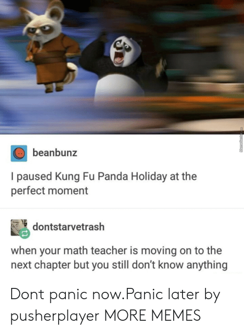 kung fu: beanbunz  I paused Kung Fu Panda Holiday at the  perfect moment  dontstarvetrash  when your math teacher is moving on to the  next chapter but you still don't know anything Dont panic now.Panic later by pusherplayer MORE MEMES