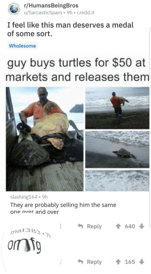 Wholesome: BEARERC/HumansBeingBros  u/SarcasticSpam 9h i.redd.it  I feel like this man deserves a medal  of some sort.  Wholesome  guy buys turtles for $50 at  markets and releases them  slashing164 9h  They are probably selling him the same  one over and over  Reply  640  mat383.Th  orm ig  Reply  165