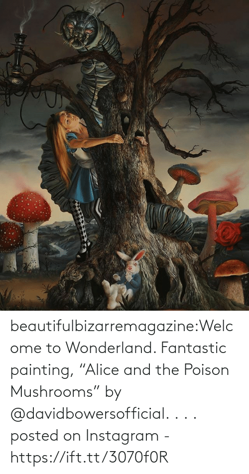 """Ift Tt: beautifulbizarremagazine:Welcome to Wonderland. Fantastic painting, """"Alice and the Poison Mushrooms"""" by @davidbowersofficial. . . .         posted on Instagram - https://ift.tt/3070f0R"""