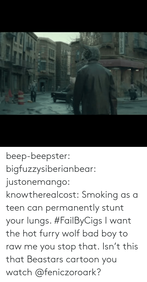 data: beep-beepster: bigfuzzysiberianbear:  justonemango:  knowtherealcost:  Smoking as a teen can permanently stunt your lungs. #FailByCigs  I want the hot furry wolf bad boy to raw me  you stop that.     Isn't this that Beastars cartoon you watch @feniczoroark?