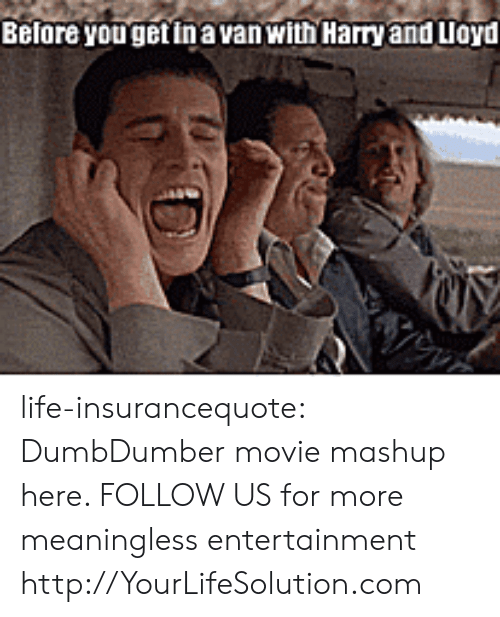 Dumb, Life, and Tumblr: Before yougetinavan with Harry and Lloyd life-insurancequote: DumbDumber movie mashup here.   FOLLOW US for more meaningless entertainment http://YourLifeSolution.com