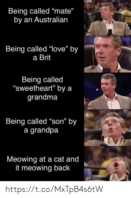 "Grandpa: Being called ""mate""  by an Australian  Being called ""love"" by  a Brit  Being called  ""sweetheart"" by a  grandma  Being called ""son"" by  a grandpa  Meowing at a cat and  it meowing back https://t.co/MxTpB4s6tW"