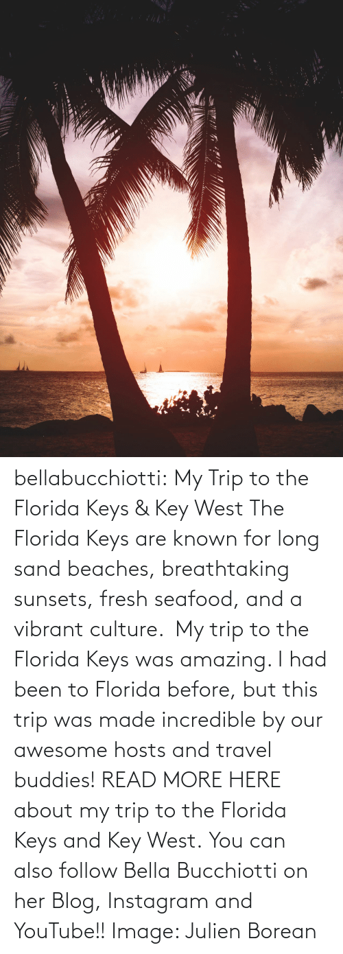 culture: bellabucchiotti: My Trip to the Florida Keys & Key West  The Florida Keys are known for long sand beaches, breathtaking sunsets,  fresh seafood, and a vibrant culture.  My trip to the Florida Keys was  amazing. I had been to Florida before, but this trip was made incredible  by our awesome hosts and travel buddies!  READ MORE HERE about my trip to the Florida Keys and Key West. You can also follow Bella Bucchiotti on her Blog, Instagram and YouTube!! Image:     Julien Borean