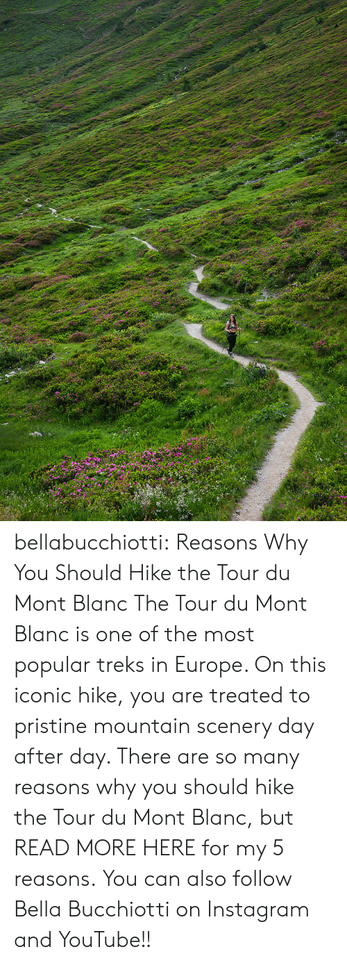 youtube.com: bellabucchiotti:  Reasons Why You Should Hike the Tour du Mont Blanc   The Tour du Mont Blanc is one of the most popular treks in Europe. On  this iconic hike, you are treated to pristine mountain scenery day after  day. There are so many reasons why you should hike the Tour du Mont  Blanc, but READ MORE HERE for my 5 reasons.   You can also follow Bella Bucchiotti on Instagram and YouTube!!