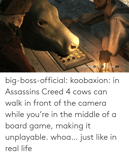 Game: big-boss-official: koobaxion: in Assassins Creed 4 cows can walk in front of the camera while you're in the middle of a board game, making it unplayable. whoa… just like in real life