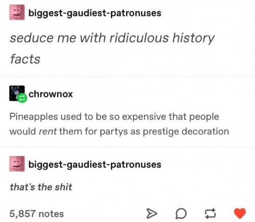 seduce: biggest-gaudiest-patronuses  seduce me with ridiculous history  facts  chrownox  Pineapples used to be so expensive that people  would rent them for partys as prestige decoration  biggest-gaudiest-patronuses  that's the shit  5,857 notes