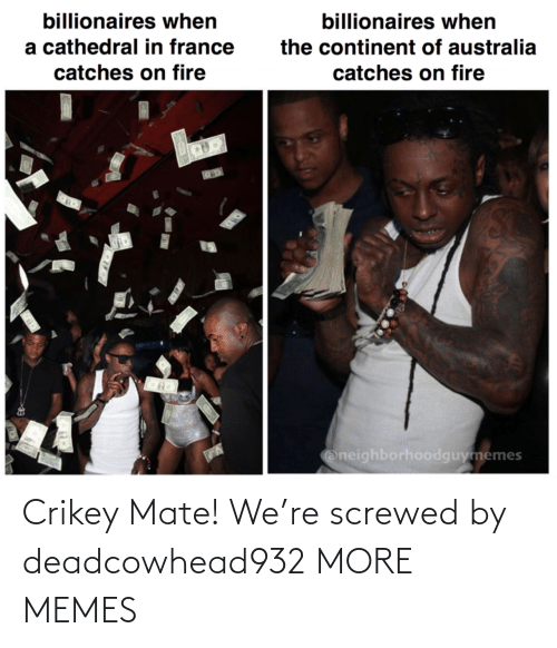 on fire: billionaires when  billionaires when  a cathedral in france  the continent of australia  catches on fire  catches on fire  Oneighborhoodguymemes Crikey Mate! We're screwed by deadcowhead932 MORE MEMES