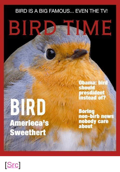 """fing: BIRD IS A BIG FAMOUS... EVEN THE TV!  BIRD TIME  Obama: bird  should  presdident  instead of?  BIRD  Boring  non-birb news  nobody care  about  Amerieca's  Sweethert <p>[<a href=""""https://www.reddit.com/r/surrealmemes/comments/8j3dkf/bird_fing_a_new_big_and_a_famous_collect_in/"""">Src</a>]</p>"""