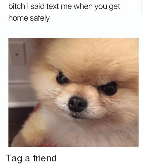homed: bitch i said text me when you get  home safely Tag a friend