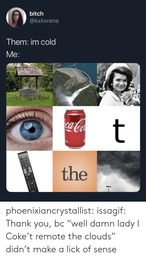 """Bitch, Gif, and Tumblr: bitch  @kxkxrena  Them: im cold  Me:  ORIONATASTE  ca-Coa  t  the phoenixiancrystallist: issagif:   Thank you, bc """"well damn lady I Coke't remote the clouds"""" didn't make a lick of sense"""