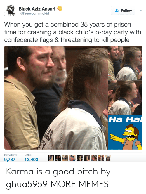 Bitch, Dank, and Memes: Black Aziz Ansari  @Freeyourmindkid  Follow  When you get a combined 35 years of prison  time for crashing a black child's b-day party with  confederate flags & threatening to kill people  Ha Ha  на на  RETWEETSLIKES  9,73713,403 Karma is a good bitch by ghua5959 MORE MEMES