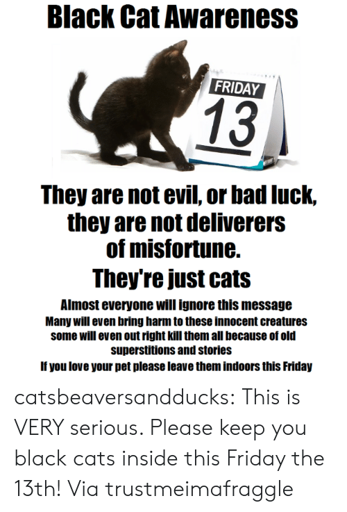 Bad, Cats, and Friday: Black Cat Awareness  FRIDAY  13  They are not evil, or bad luck,  they are not deliverers  of misfortune.  They're just cats  Almost everyone will ignore this message  Many will even bring harm to these innocent creatures  some will even out right kill them all because of old  superstitions and stories  If you love your pet please leave them indoors this Friday catsbeaversandducks: This is VERY serious. Pleasekeep you black cats inside this Friday the 13th! Viatrustmeimafraggle