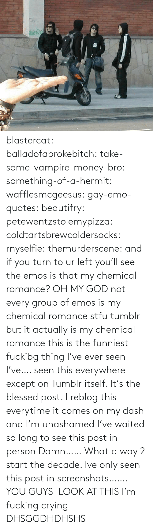 Actually: blastercat: balladofabrokebitch:  take-some-vampire-money-bro:  something-of-a-hermit:   wafflesmcgeesus:  gay-emo-quotes:  beautifry:  petewentzstolemypizza:  coldtartsbrewcoldersocks:  rnyselfie:  themurderscene:  and if you turn to ur left you'll see the emos  is that my chemical romance?  OH MY GOD not every group of emos is my chemical romance stfu tumblr  but it actually is my chemical romance  this is the funniest fuckibg thing I've ever seen   I've…. seen this everywhere except on Tumblr itself. It's the blessed post.    I reblog this everytime it comes on my dash and I'm unashamed  I've waited so long to see this post in person     Damn…… What a way 2 start the decade. Ive only seen this post in screenshots…….  YOU GUYS  LOOK AT THIS I'm fucking crying     DHSGGDHDHSHS