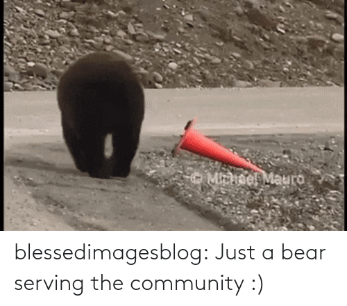 community: blessedimagesblog:  Just a bear serving the community :)