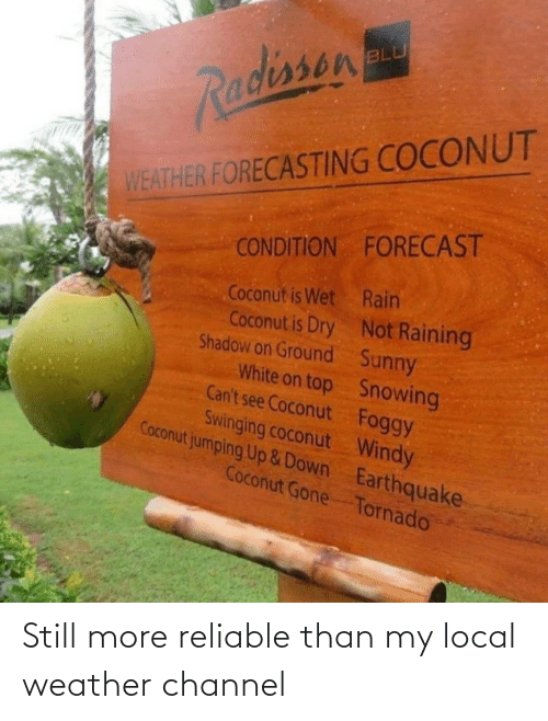 Weather: BLU  Radissen  WEATHER FORECASTING COCONUT  CONDITION FORECAST  Coconut is Wet Rain  Coconut is Dry Not Raining  Shadow on Ground Sunny  White on top Snowing  Can't see Coconut Foggy  Swinging coconut Windy  Coconut jumping Up &Down Earthquake  Coconut Gone Tornado Still more reliable than my local weather channel