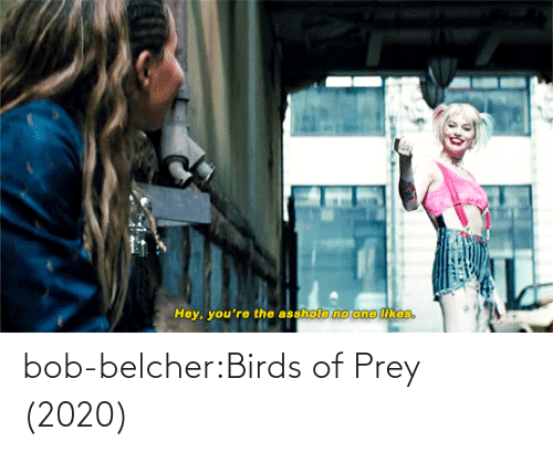 class: bob-belcher:Birds of Prey (2020)