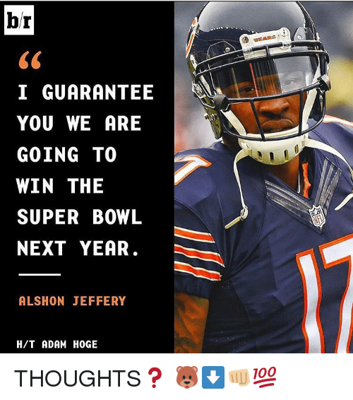 Memes, Super Bowl, and Alshon Jeffery: br  I GUARANTEE  YOU WE ARE  GOING TO  WIN THE  SUPER BOWL  NEXT YEAR  ALSHON JEFFERY  HIT ADAM HOGE THOUGHTS❓ 🐻⬇👊🏼💯