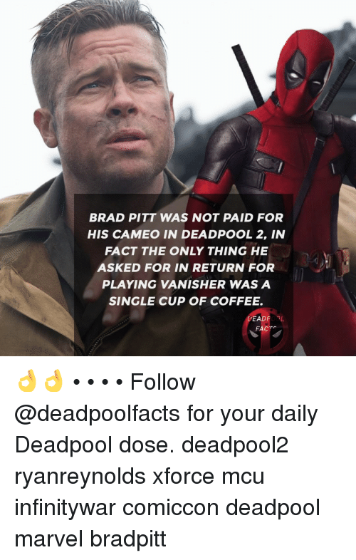 Brad Pitt, Facts, and Memes: BRAD PITT WAS NOT PAID FOR  HIS CAMEO IN DEADPOOL 2, IN  FACT THE ONLY THING HE  ASKED FOR IN RETURN FOR  PLAYING VANISHER WAS A  SINGLE CUP OF COFFEE.  DEADPOBL  FACTS 👌👌 • • • • Follow @deadpoolfacts for your daily Deadpool dose. deadpool2 ryanreynolds xforce mcu infinitywar comiccon deadpool marvel bradpitt
