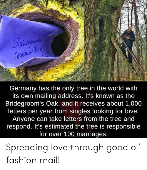 Fashion, Love, and Germany: Braintiania  Dodaver Forst  Germany has the only tree in the world with  its own mailing address. It's known as the  Bridegroom's Oak, and it receives about 1,000  letters per year from singles looking for love.  Anyone can take letters from the tree and  respond. It's estimated the tree is responsible  for over 100 marriages. Spreading love through good ol' fashion mail!