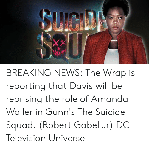 Memes, News, and Squad: BREAKING NEWS: The Wrap is reporting that Davis will be reprising the role of Amanda Waller in Gunn's The Suicide Squad. (Robert Gabel Jr) DC Television Universe