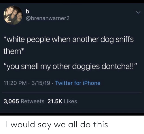 """Iphone, Smell, and Twitter: @brenanwarner2  white people when another dog sniffs  them*  """"you smell my other doggies dontcha!!""""  11:20 PM 3/15/19 Twitter for iPhone  3,065 Retweets 21.5K Likes I would say we all do this"""
