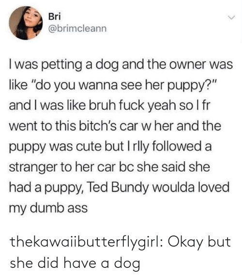"""bruh: Bri  @brimcleann  I was petting a dog and the owner was  like """"do you wanna see her puppy?""""  and I was like bruh fuck yeah so I fr  went to this bitch's car w her and the  puppy was cute but I rlly followed a  stranger to her car bc she said she  had a puppy, Ted Bundy woulda loved  my dumb ass thekawaiibutterflygirl:  Okay but she did have a dog"""
