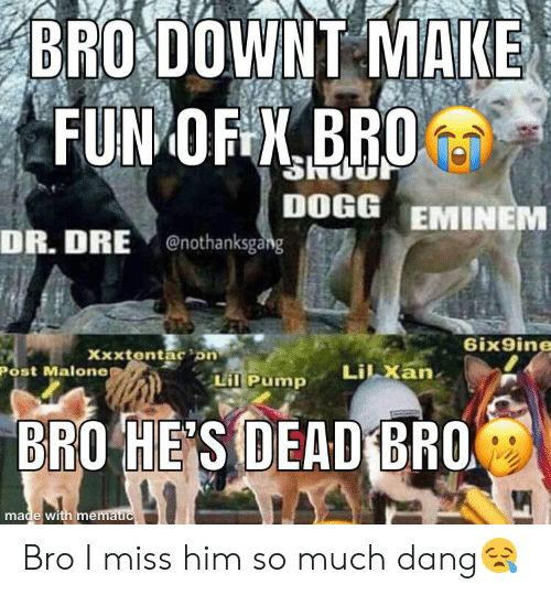 Dr. Dre, Eminem, and Post Malone: BRO DOWNT MAKE  FUN OF X.BRO  DOGG EMINEM  DR. DRE enothanksgang  6ix9ine  Xxxtentac on  Lil xan.  Post Malone  Lil Pump  BRO HE'S DEAD BRO  made with mematic Bro I miss him so much dang😪