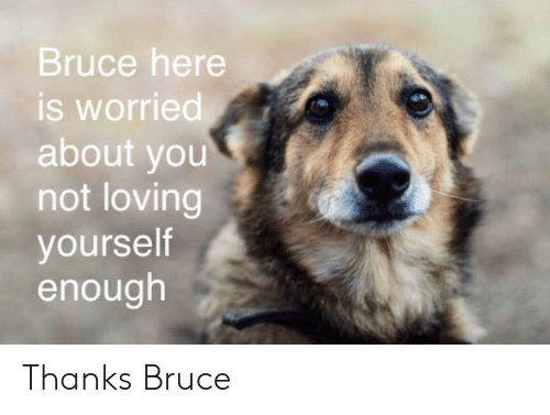 worried: Bruce here  is worried  about you  not loving  yourself  enough Thanks Bruce