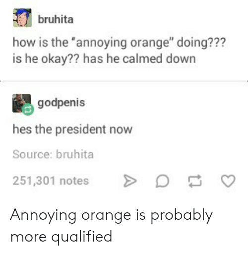 "President Now: bruhita  how is the ""annoying orange"" doing???  is he okay?? has he calmed down  godpenis  hes the president now  Source: bruhita  251,301 notesD  C Annoying orange is probably more qualified"