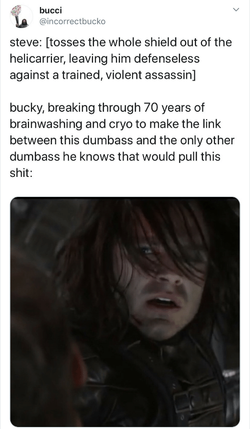 This Shit: bucci  @incorrectbucko  steve: [tosses the whole shield out of the  helicarrier, leaving him defenseless  against a trained, violent assassin]  bucky, breaking through 70 years of  brainwashing and cryo to make the link  between this dumbass and the only other  dumbass he knows that would pull this  shit: