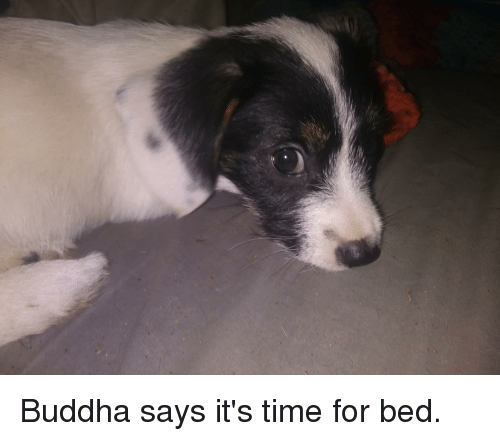 Buddha, Time, and For