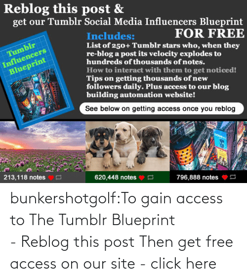 download: bunkershotgolf:To gain access to The Tumblr Blueprint - Reblog this post Then get free access on our site - click here