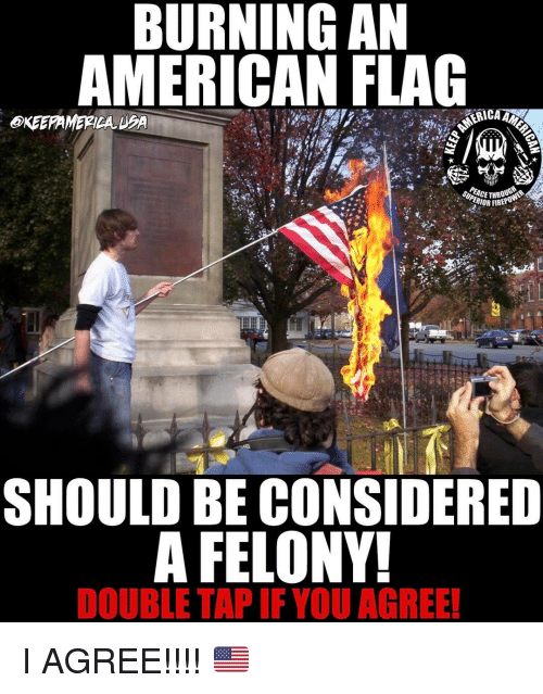 Memes, 🤖, and Flags: BURNING AN  MERICAN FLAG  SHOULD BE CONSIDERED  A FELONY!  DOUBLE TAP IF YOU AGREE! I AGREE!!!! 🇺🇸