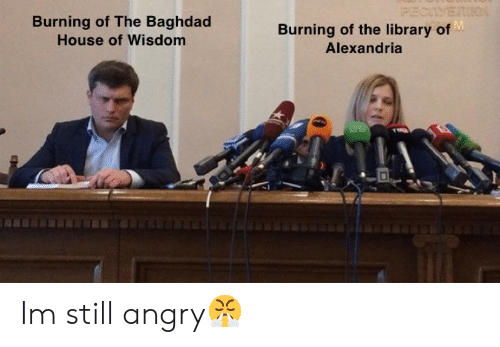 House, Library, and Angry: Burning of The Baghdad  House of Wisdom  Burning of the library of  Alexandria Im still angry😤