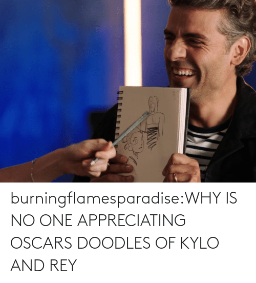 why: burningflamesparadise:WHY IS NO ONE APPRECIATING OSCARS DOODLES OF KYLO AND REY