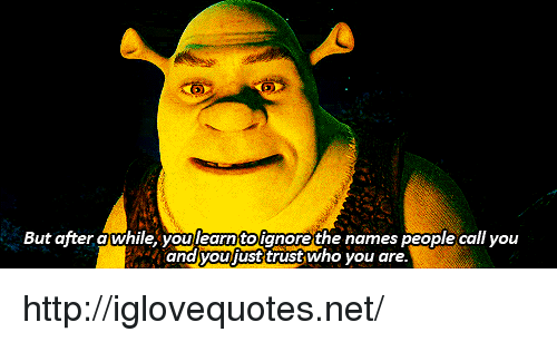 Http, Net, and Who: But ajter a while,youlearnitoignore the names people call you  and youfust trust who you are. http://iglovequotes.net/