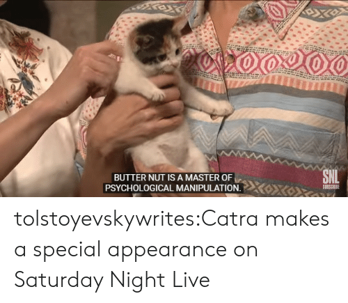 Saturday Night Live, Tumblr, and Blog: BUTTER NUT IS A MASTER OF  SUBSCRIBE  PSYCHOLOGICAL MANIPULATION. tolstoyevskywrites:Catra makes a special appearance on Saturday Night Live