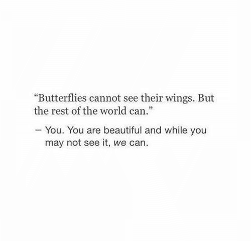 "butterflies: ""Butterflies cannot see their wings. But  the rest of the world can.""  You. You are beautiful and while you  may not see it, we can."