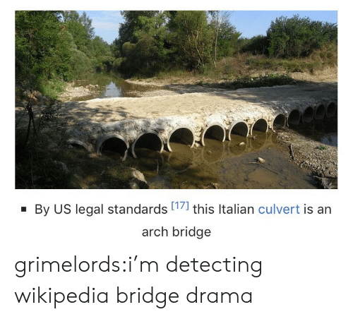Standards: By US legal standards 17] this Italian culvert is an  arch bridge grimelords:i'm detecting wikipedia bridge drama