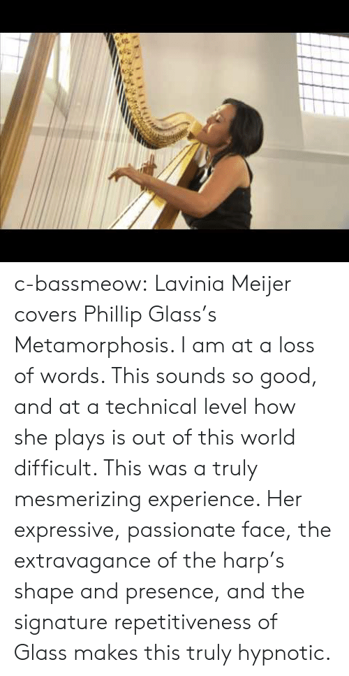 Tumblr, Metamorphosis, and Blog: c-bassmeow:  Lavinia Meijer covers Phillip Glass's Metamorphosis. I am at a loss of words. This sounds so good, and at a technical level how she plays is out of this world difficult. This was a truly mesmerizing experience. Her expressive, passionate face, the extravagance of the harp's shape and presence, and the signature repetitiveness of Glass makes this truly hypnotic.