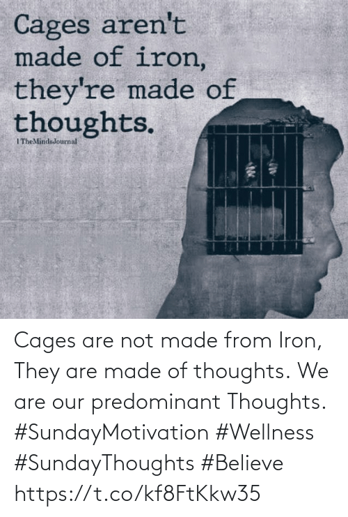 Love for Quotes: Cages are not made from Iron, They are made of thoughts. We are our predominant  Thoughts.   #SundayMotivation #Wellness #SundayThoughts #Believe https://t.co/kf8FtKkw35