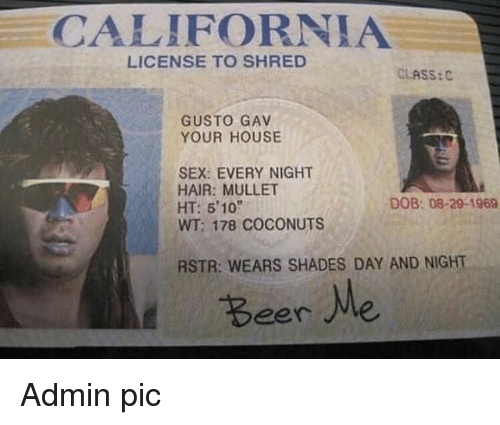 "Sex, California, and Hair: CALIFORNIA  LICENSE TO SHRED  CLASS:C  GUSTO GAV  YOUR HOUSE  SEX: EVERY NIGHT  HAIR: MULLET  HT: 510""  WT; 178 COCONUTS  DOB: 08-29-1969  RSTR: WEARS SHADES DAY AND NIGHT  Beere Admin pic"