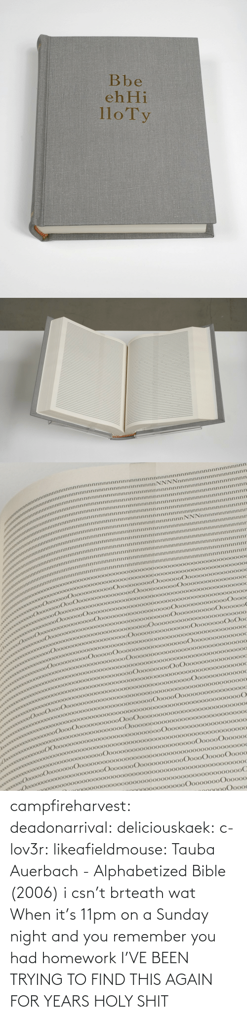 Homework: campfireharvest:  deadonarrival:  deliciouskaek:  c-lov3r:  likeafieldmouse:  Tauba Auerbach- Alphabetized Bible (2006)  i csn't brteath  wat  When it's 11pm on a Sunday night and you remember you had homework   I'VE BEEN TRYING TO FIND THIS AGAIN FOR YEARS HOLY SHIT