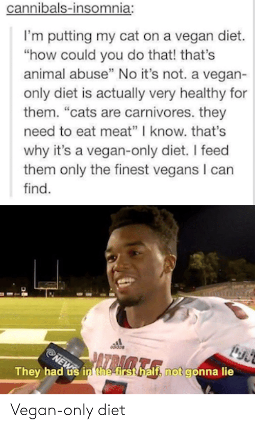 """Cats, Vegan, and Animal: cannibals-insomnia:  I'm putting my cat on a vegan diet.  """"how could you do that! that's  animal abuse"""" No it's not. a vegan-  only diet is actually very healthy for  them. """"cats are carnivores. they  need to eat meat"""" know. that's  why it's a vegan-only diet. I feed  them only the finest vegans I can  find.  They h  If, not gonna lie  ad usi Vegan-only diet"""