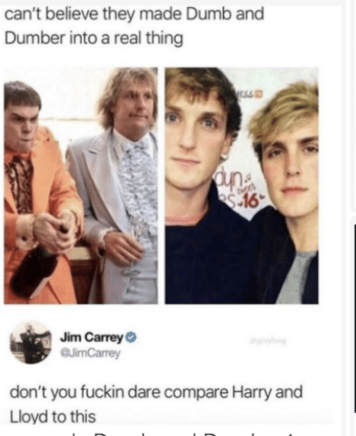 Dumb, Dumb and Dumber, and Harry: can't believe they made Dumb and  Dumber into a real thing  ESS  Jim CarreyO  @JimCarrey  drgraytang  don't you fuckin dare compare Harry and  Lloyd to this