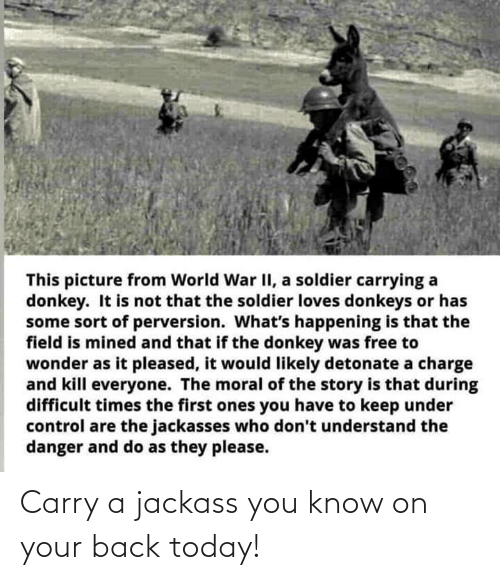 Your: Carry a jackass you know on your back today!