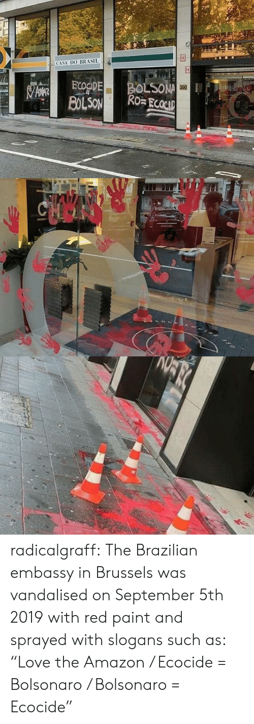 """Amazon, Target, and Tumblr: CASA DO BRASIL  BOLSONA  Ro ECOCIP  ECOGIDE  BOLSON  350   CHOO radicalgraff:   The Brazilian embassy in Brussels was vandalised on September 5th 2019  with red paint and sprayed with slogans such as: """"Love the Amazon /  Ecocide = Bolsonaro / Bolsonaro = Ecocide"""""""