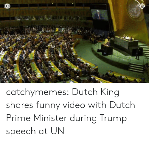 Funny, Tumblr, and Blog: catchymemes: Dutch King shares funny video with Dutch Prime Minister during Trump speech at UN