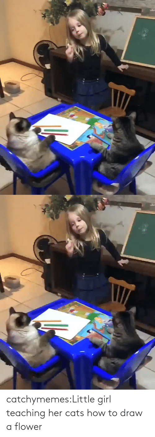 Girl: catchymemes:Little girl teaching her cats how to draw a flower